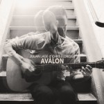 Julian Lage and Chris Eldridge - Avalon